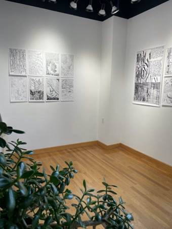 Second Nature Exhibit Founders Gallery Photo